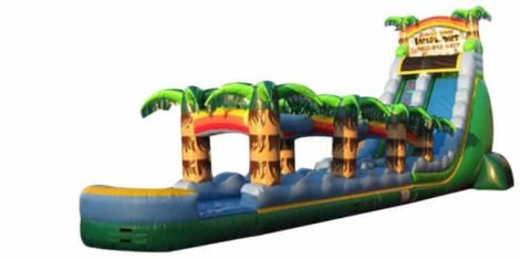 The Big Tropical Themed Inflatable Water Slide