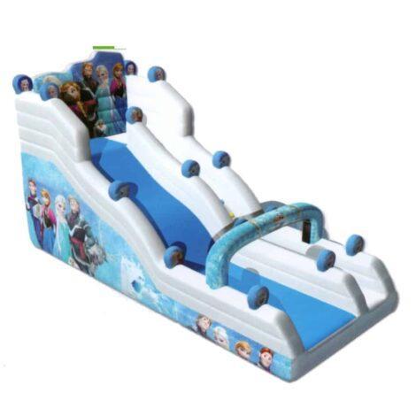 Frozen dry or wet slide